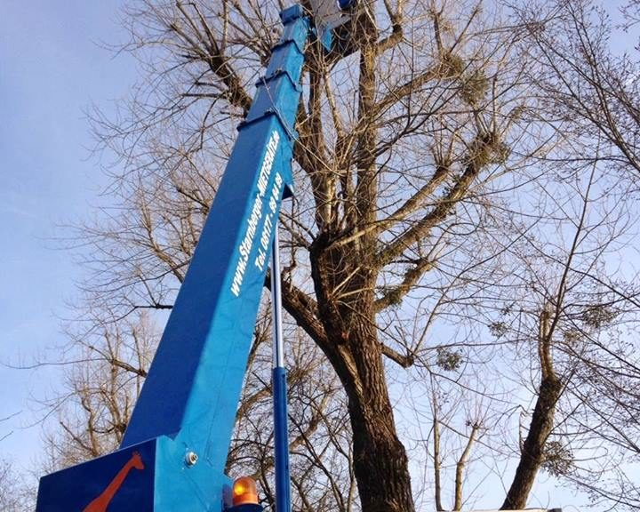 LKW-Bühne LB 28 Baumarbeiten Ammerland